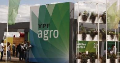 Sumar a YPF Agro como generador de divisas